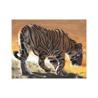 Tiger at Bandhavgarh Canvas Canvas Print