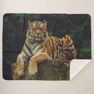TIGER at REST Sherpa Blanket