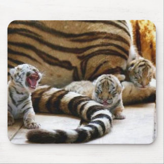 Tiger Babies Mousepad