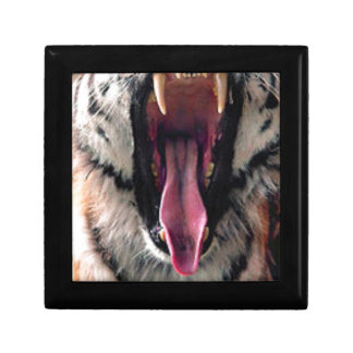 Tiger Bearing Teeth Gift Box