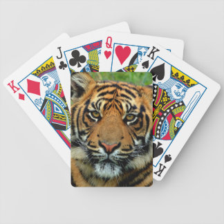 Tiger Bicycle Playing Cards