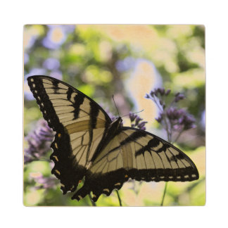 Tiger Butterfly on a Flower Wood Coaster