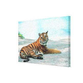 Tiger by river canvas prints
