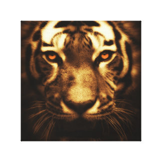 Tiger canvas 12x12 stretched canvas print
