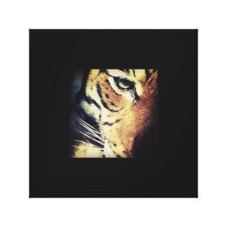 Tiger Canvas Canvas Print