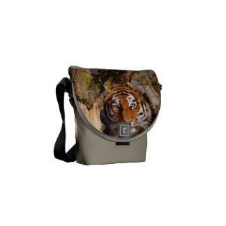 Tiger Cat Animal Stripes Pattern Destiny Destiny's Courier Bags