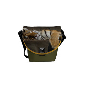 Tiger Cat Animal Stripes Pattern Destiny Destiny's Messenger Bag