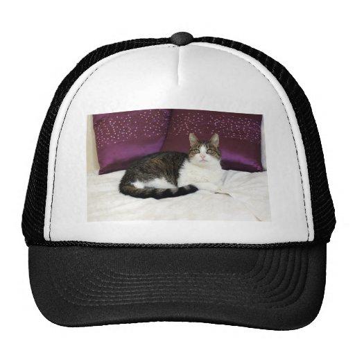 Tiger Cat Mesh Hats