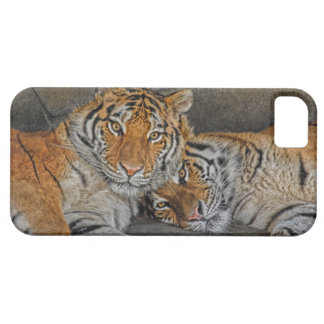 Tiger Cave Case For The iPhone 5