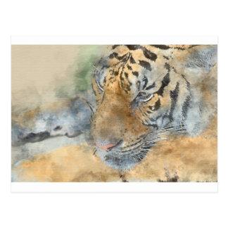 Tiger Close Up in Watercolor Postcard
