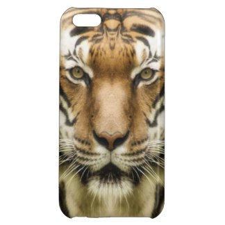 Tiger Close-Up phone cases Cover For iPhone 5C