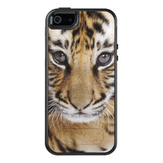 Tiger Cub (2 Month Old) OtterBox iPhone 5/5s/SE Case