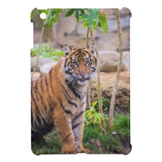 Tiger cub iPad mini cases