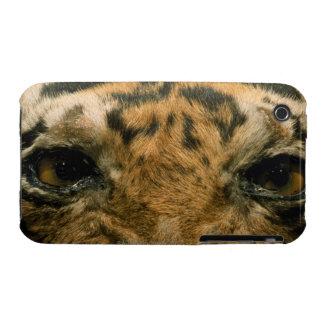 Tiger eyes Case-Mate iPhone 3 case