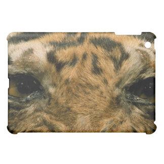 Tiger eyes iPad mini cases