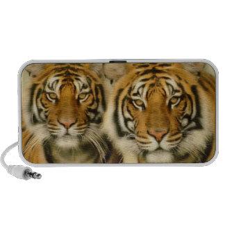 Tiger Eyes Portable Speakers
