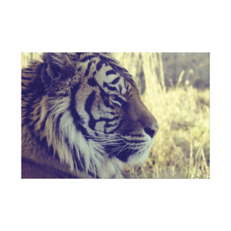 Tiger Face Aside Special Light Effect Vintage Gallery Wrap Canvas