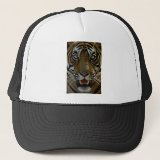 Tiger Face Close Up Trucker Hat