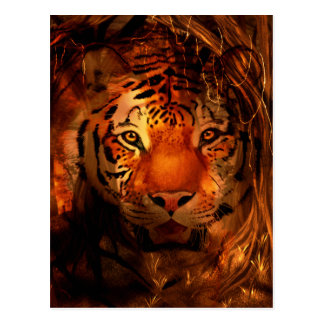 Tiger face postcard