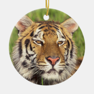 Tiger Face Round Ceramic Decoration