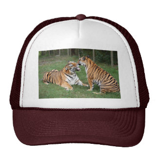 Tiger Friends-007 Cap