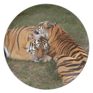 tiger-friends-b-5 party plates