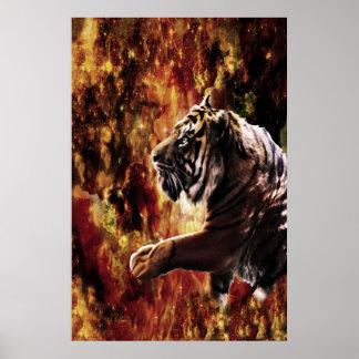 Tiger Galaxy Poster