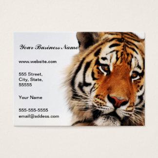 Tiger glance sideways photo business card