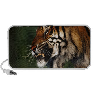 Tiger Head Close Up Notebook Speakers