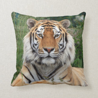 Tiger head male beautiful photo cushion, pillow