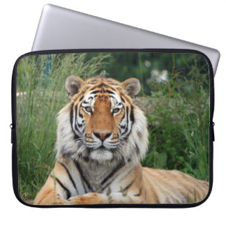 Tiger head male beautiful photo laptop bag
