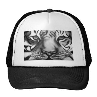 Tiger in Black and White Cap