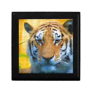 Tiger in the Bamboo - Painting Gift Box