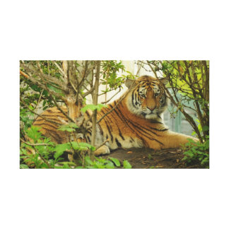 Tiger in The Forest Canvas Prints