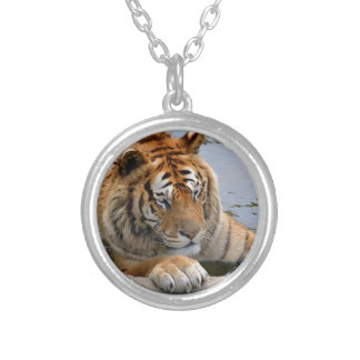 Tiger in the water silver plated necklace