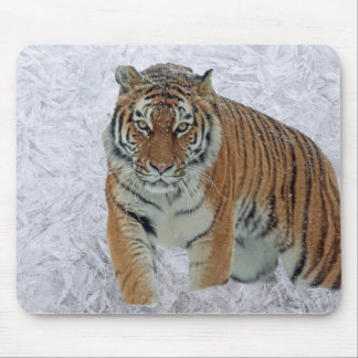 Tiger in white snowflakes mousepad