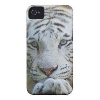 Tiger iphone case 4S