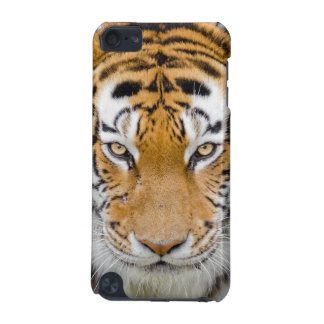 Tiger iPod Touch 5G Cover
