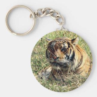 Tiger Key Ring