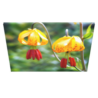 Tiger Lillies Stretched Canvas Print
