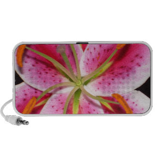 Tiger Lily Explosion Portable Speakers