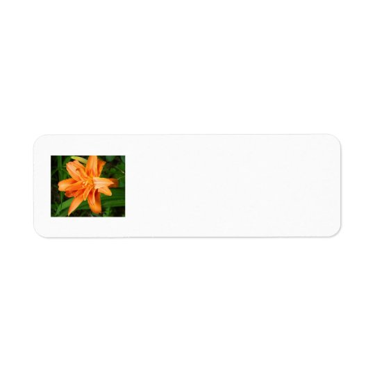 Tiger Lily Return Address Label