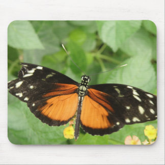 Tiger Longwing Butterfly Mousepad