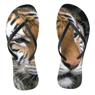 Tiger Lover Striped Thongs
