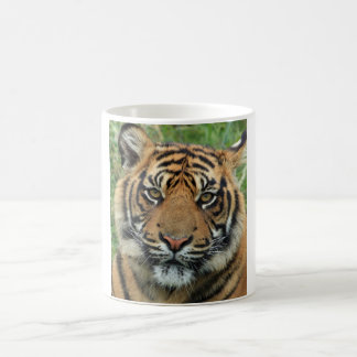 Tiger packs WHITE 325 ml traditional Mug