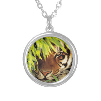 Tiger Peers Behind A Leaf Silver Plated Necklace