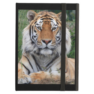 Tiger portrait beautiful close-up photo, gift iPad air cover