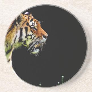 Tiger Predator Fur Beautiful Dangerous Cat Coaster