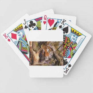 Tiger Predator Lurking Fur Beautiful Dangerous Bicycle Playing Cards