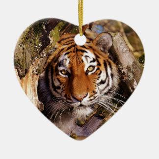 Tiger Predator Lurking Fur Beautiful Dangerous Ceramic Ornament